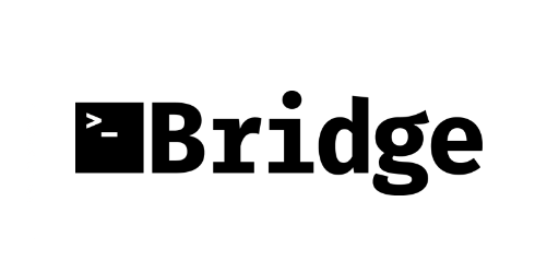 Bridge FT logo